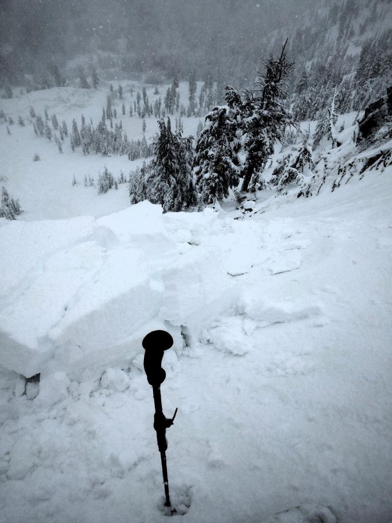 Looking down the slope to the debris pile.