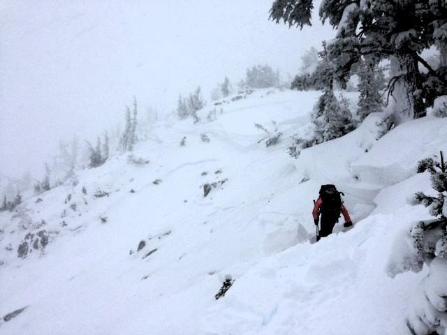 "<a href=""https://www.sierraavalanchecenter.org/avalanche-terms/starting-zone"" title=""The portion of an avalanche path where an avalanche releases."" class=""lexicon-term"">Starting zone</a> on the upper <a href=""https://www.sierraavalanchecenter.org/avalanche-terms/avalanche-path"" title=""A terrain feature where an avalanche occurs. Composed of a Starting Zone, Track, and Runout Zone."" class=""lexicon-term"">avalanche path</a> after the afternoon <a href=""https://www.sierraavalanchecenter.org/avalanche-terms/avalanche"" title=""A mass of snow sliding, tumbling, or flowing down an inclined surface."" class=""lexicon-term"">avalanche</a> release. This is a mix of the morning and afternoon crowns. Note how the <a href=""https://www.sierraavalanchecenter.org/avalanche-terms/crown-face"" title=""The top fracture surface of a slab avalanche. Usually smooth, clean cut, and angled 90 degrees to the bed surface."" class=""lexicon-term"">crown</a> steps down into different layers."