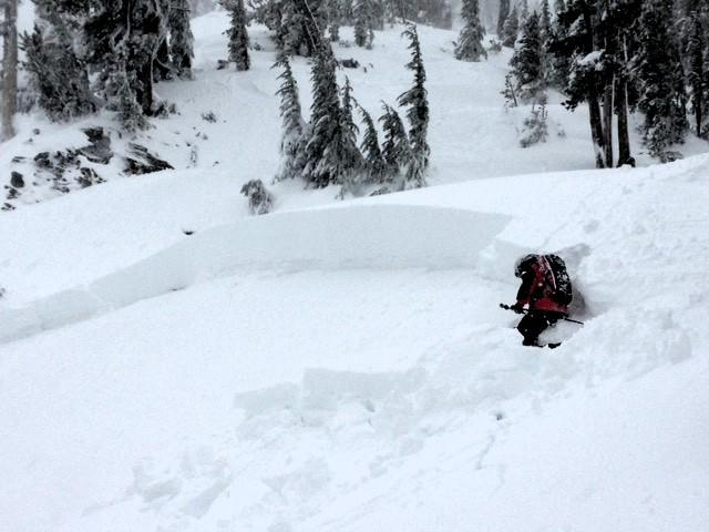 "Smaller <a href=""https://www.sierraavalanchecenter.org/avalanche-terms/avalanche"" title=""A mass of snow sliding, tumbling, or flowing down an inclined surface."" class=""lexicon-term"">avalanche</a> from the afternoon in an adjacent path."