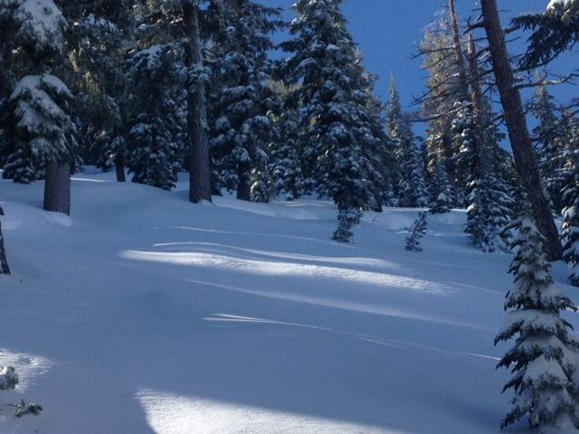 """<a href=""""https://www.sierraavalanchecenter.org/avalanche-terms/deep-slab-avalanche"""" title=""""Avalanches that break deeply into old weak layers of snow that formed some time ago."""" class=""""lexicon-term"""">Deep Slab</a> at 8600' below treeline terrain."""