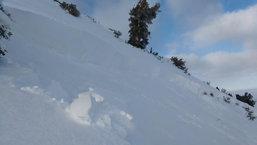 """<a href=""""/avalanche-terms/crown-face"""" title=""""The top fracture surface of a slab avalanche. Usually smooth, clean cut, and angled 90 degrees to the bed surface."""" class=""""lexicon-term"""">Crown</a> line to 6 feet at lower left in overview photo."""