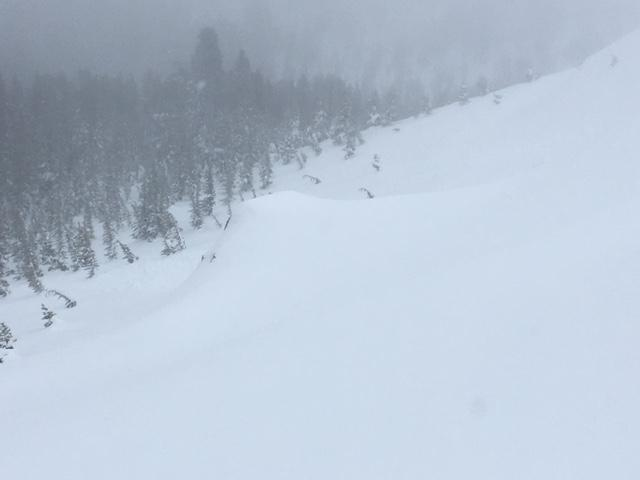 "Debris below <a href=""https://www.sierraavalanchecenter.org/avalanche-terms/wind-slab"" title=""A cohesive layer of snow formed when wind deposits snow onto leeward terrain. Wind slabs are often smooth and rounded and sometimes sound hollow."" class=""lexicon-term"">wind slab</a>"