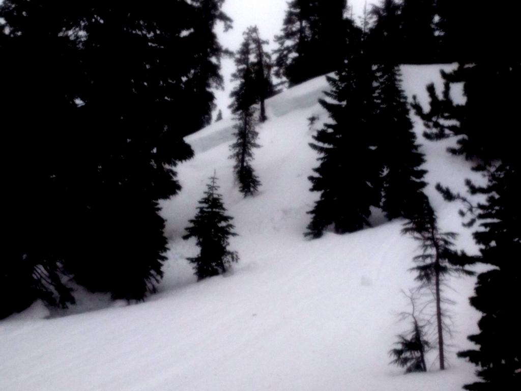 """Another of the below treeline wet <a href=""""https://www.sierraavalanchecenter.org/avalanche-terms/deep-slab-avalanche"""" title=""""Avalanches that break deeply into old weak layers of snow that formed some time ago."""" class=""""lexicon-term"""">deep slab</a> <a href=""""https://www.sierraavalanchecenter.org/avalanche-terms/avalanche"""" title=""""A mass of snow sliding, tumbling, or flowing down an inclined surface."""" class=""""lexicon-term"""">avalanches</a>."""