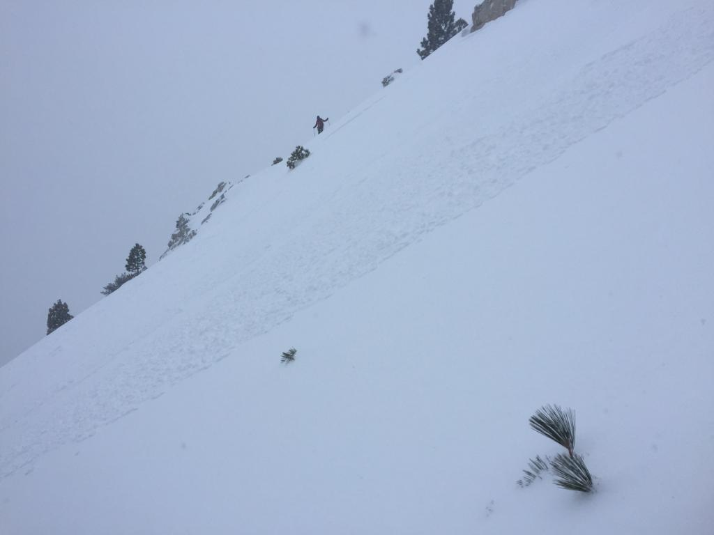 "Storm <a href=""https://www.sierraavalanchecenter.org/avalanche-terms/slab"" title=""A relatively cohesive snowpack layer."" class=""lexicon-term"">slab</a> on side <a href=""https://www.sierraavalanchecenter.org/avalanche-terms/loading"" title=""The addition of weight on top of a snowpack, usually from precipitation, wind drifting, or a person."" class=""lexicon-term"">loaded</a> small ridge top. Search and Rescue in background"