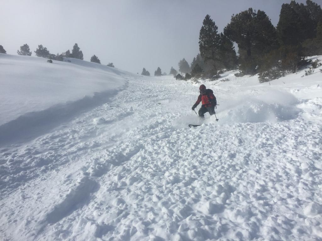 """Skiing debris field after controlled <a href=""""/avalanche-terms/ski-cut"""" title=""""A stability test where a skier, rider or snowmobiler rapidly crosses an avalanche starting zone to see if an avalanche initiates. Slope cuts can be dangerous and should only be performed by experienced people on small avalanche paths or test slopes."""" class=""""lexicon-term"""">ski cut</a> release"""