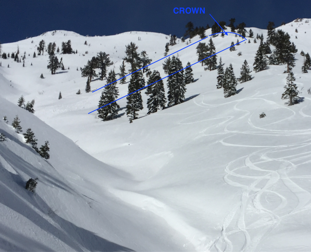 """Aftermath of <a href=""""/avalanche-terms/avalanche"""" title=""""A mass of snow sliding, tumbling, or flowing down an inclined surface."""" class=""""lexicon-term"""">Avalanche</a> near Rose Knob Peak."""