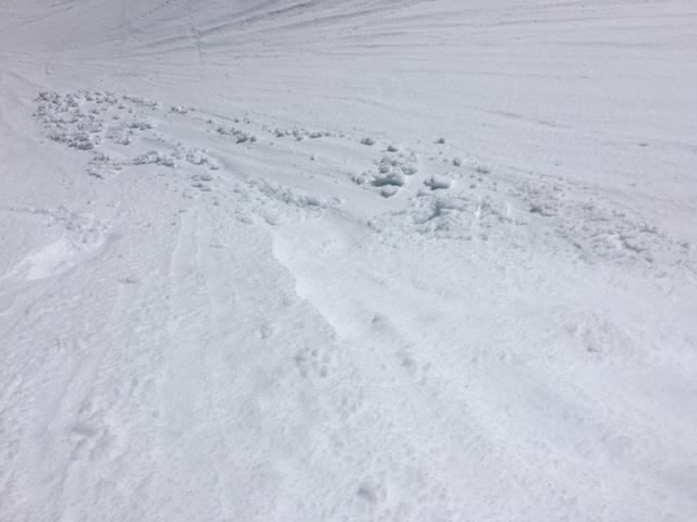 "Same small loose wet <a href=""https://www.sierraavalanchecenter.org/avalanche-terms/avalanche"" title=""A mass of snow sliding, tumbling, or flowing down an inclined surface."" class=""lexicon-term"">avalanche</a> in previous photo."
