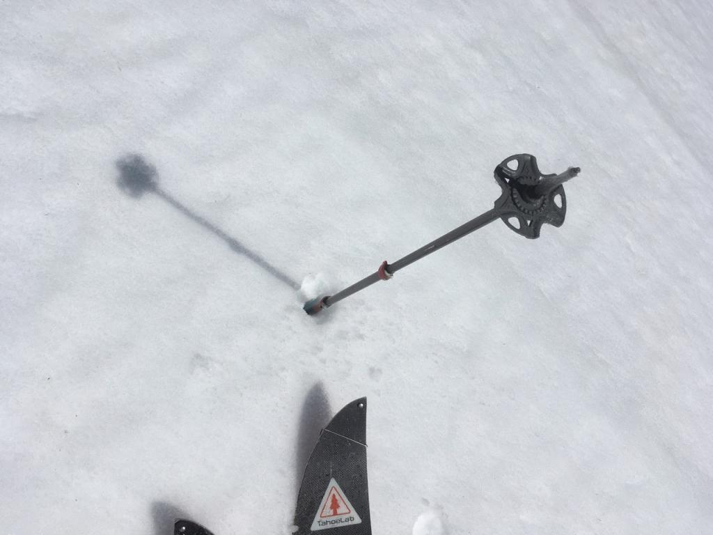 At 9:45am, around 8400 feet on an open SE slope, the snow surface was soft and a pole handle could easily penetrate about 20 cms.