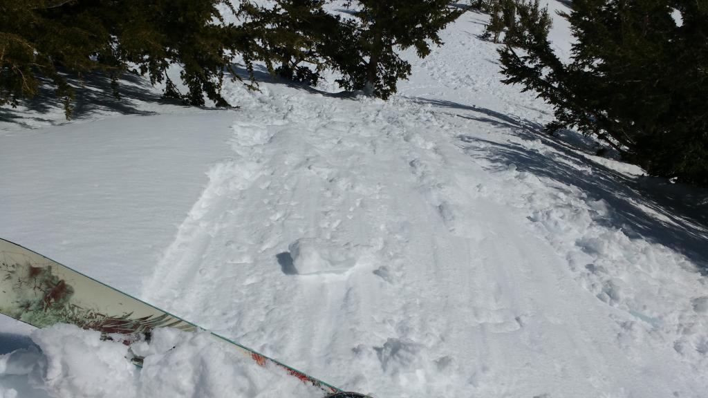 """<a href=""""http://www.sierraavalanchecenter.org/avalanche-terms/ski-cut"""" title=""""A stability test where a skier, rider or snowmobiler rapidly crosses an avalanche starting zone to see if an avalanche initiates. Slope cuts can be dangerous and should only be performed by experienced people on small avalanche paths or test slopes."""" class=""""lexicon-term"""">Ski cut</a> placed on test slope just after roller ball video was taken produced this shallow loose wet <a href=""""http://www.sierraavalanchecenter.org/avalanche-terms/avalanche"""" title=""""A mass of snow sliding, tumbling, or flowing down an inclined surface."""" class=""""lexicon-term"""">avalanche</a>."""