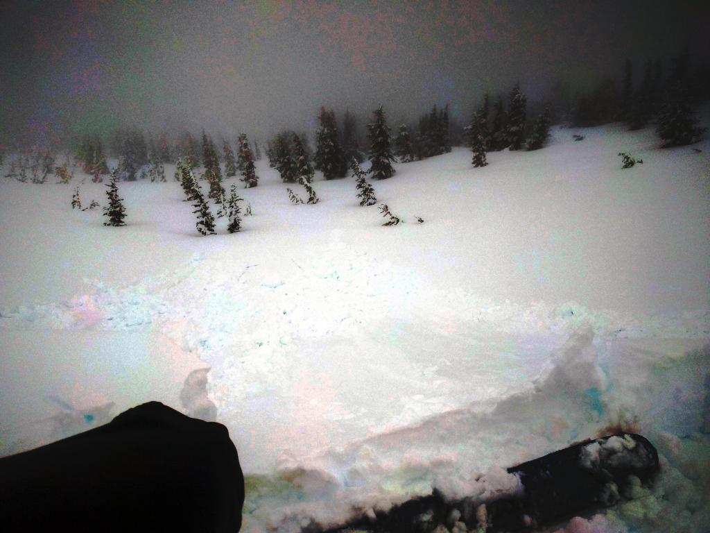 """Small loose wet <a href=""""https://www.sierraavalanchecenter.org/avalanche-terms/avalanche"""" title=""""A mass of snow sliding, tumbling, or flowing down an inclined surface."""" class=""""lexicon-term"""">avalanches</a> resulting from <a href=""""https://www.sierraavalanchecenter.org/avalanche-terms/cornice"""" title=""""A mass of snow deposited by the wind, often overhanging, and usually near a sharp terrain break such as a ridge. Cornices can break off unexpectedly and should be approached with caution."""" class=""""lexicon-term"""">cornice</a> pieces dropped onto a NE facing wind-<a href=""""https://www.sierraavalanchecenter.org/avalanche-terms/loading"""" title=""""The addition of weight on top of a snowpack, usually from precipitation, wind drifting, or a person."""" class=""""lexicon-term"""">loaded</a> slope near 9100 ft."""
