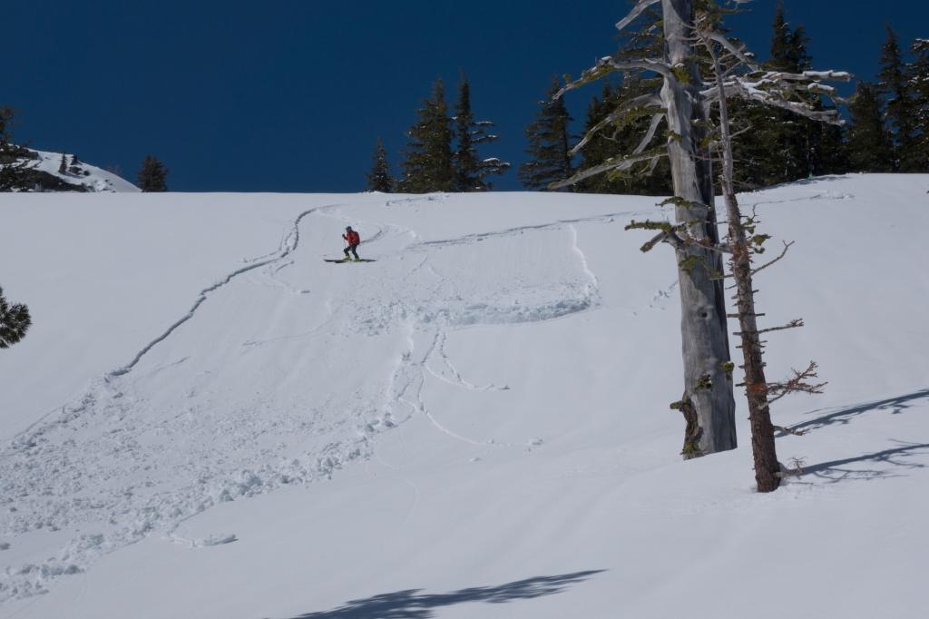 "<a href=""https://www.sierraavalanchecenter.org/avalanche-terms/ski-cut"" title=""A stability test where a skier, rider or snowmobiler rapidly crosses an avalanche starting zone to see if an avalanche initiates. Slope cuts can be dangerous and should only be performed by experienced people on small avalanche paths or test slopes."" class=""lexicon-term"">ski cut</a> wet loose"