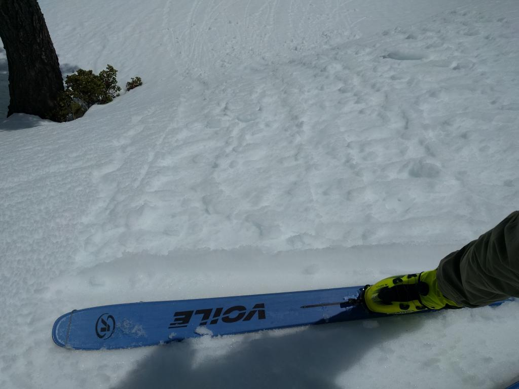 "Very small wet snow sluffs on an E-SE <a href=""https://www.sierraavalanchecenter.org/avalanche-terms/aspect"" title=""The compass direction a slope faces (i.e. North, South, East, or West.)"" class=""lexicon-term"">aspect</a> @ 7200 ft. @ 12:30 pm"