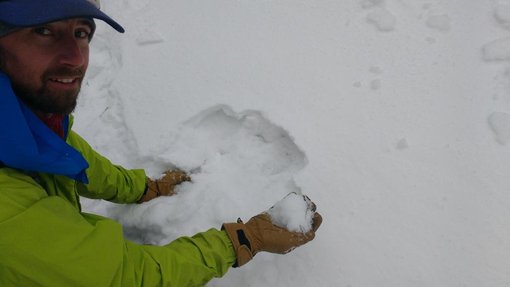 "<a href=""https://www.sierraavalanchecenter.org/avalanche-terms/faceted-snow"" title=""Angular snow with poor bonding created from large temperature gradients within the snowpack."" class=""lexicon-term"">Faceted snow</a> from underneath 0.5-1 cm thick surface <a href=""https://www.sierraavalanchecenter.org/avalanche-terms/melt-freeze-snow"" title=""Snow grains that have partially melted and then frozen again."" class=""lexicon-term"">melt-freeze</a> crust."
