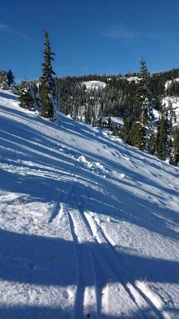 "<a href=""https://www.sierraavalanchecenter.org/avalanche-terms/snowpit"" title=""A pit dug vertically into the snowpack where snow layering is observed and stability tests may be performed. Also called a snow profile."" class=""lexicon-term"">Snowpit</a> location"