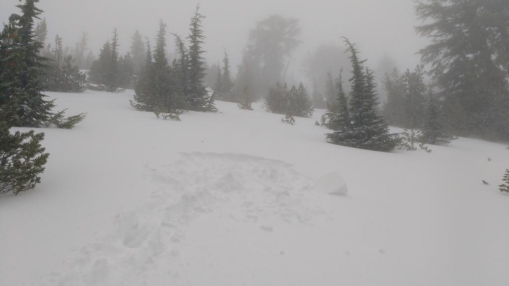"<a href=""https://www.sierraavalanchecenter.org/avalanche-terms/snowpit"" title=""A pit dug vertically into the snowpack where snow layering is observed and stability tests may be performed. Also called a snow profile."" class=""lexicon-term"">Snowpit</a> location as noted on map. 15 in of total snow depth."