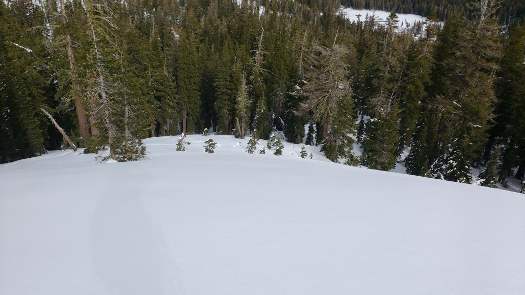 "Evidence of wind destroyed SH on this open slope.  8200', N <a href=""https://www.sierraavalanchecenter.org/avalanche-terms/aspect"" title=""The compass direction a slope faces (i.e. North, South, East, or West.)"" class=""lexicon-term"">aspect</a>."