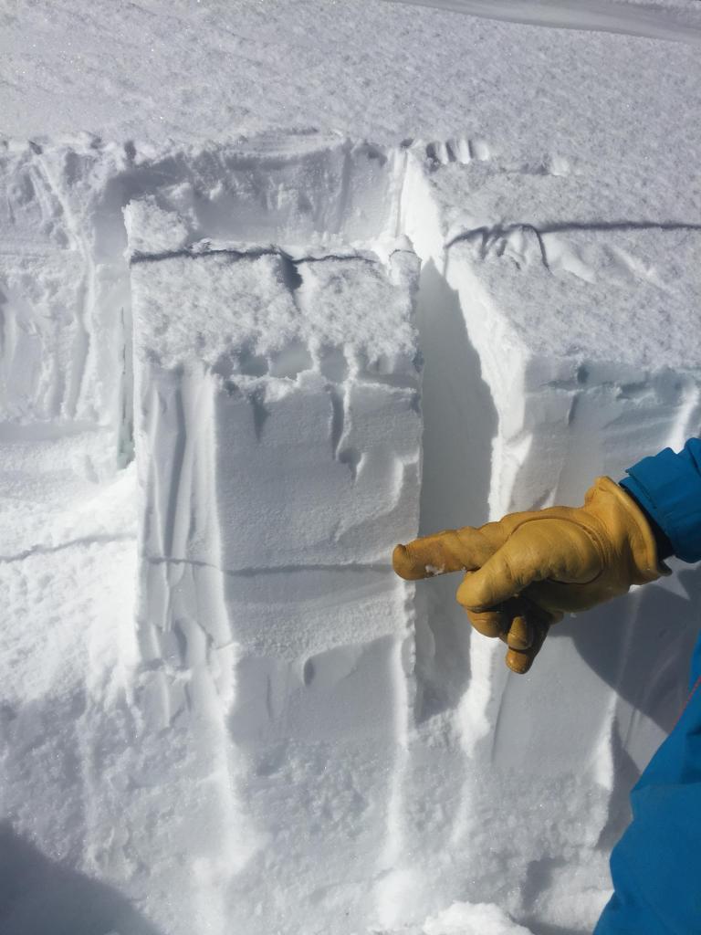 CTE Failure 15-20cm down in the snow pack