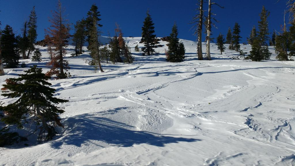 "Heavily wind scoured E <a href=""https://www.sierraavalanchecenter.org/avalanche-terms/aspect"" title=""The compass direction a slope faces (i.e. North, South, East, or West.)"" class=""lexicon-term"">aspect</a> near summit. No snow remaining for future NE wind transport."