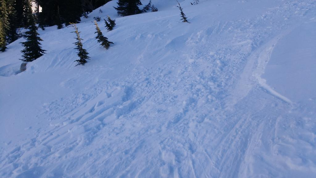"Small <a href=""https://www.sierraavalanchecenter.org/avalanche-terms/wind-slab"" title=""A cohesive layer of snow formed when wind deposits snow onto leeward terrain. Wind slabs are often smooth and rounded and sometimes sound hollow."" class=""lexicon-term"">wind slabs</a> reactive to ski cuts. N <a href=""https://www.sierraavalanchecenter.org/avalanche-terms/aspect"" title=""The compass direction a slope faces (i.e. North, South, East, or West.)"" class=""lexicon-term"">aspect</a> ~9,100'."