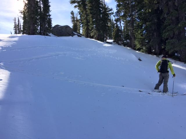 "Small test slope-BTL terrain, northerly <a href=""https://www.sierraavalanchecenter.org/avalanche-terms/aspect"" title=""The compass direction a slope faces (i.e. North, South, East, or West.)"" class=""lexicon-term"">aspect</a>.  <a href=""https://www.sierraavalanchecenter.org/avalanche-terms/whumpf"" title=""When the fracture of a lower snow layer causes an upper layer to fall or collapse, making a whumpfing sound. This an obvious sign of instability. See Collapse."" class=""lexicon-term"">Whumpfing</a> occurred when 1 skier got on slope."