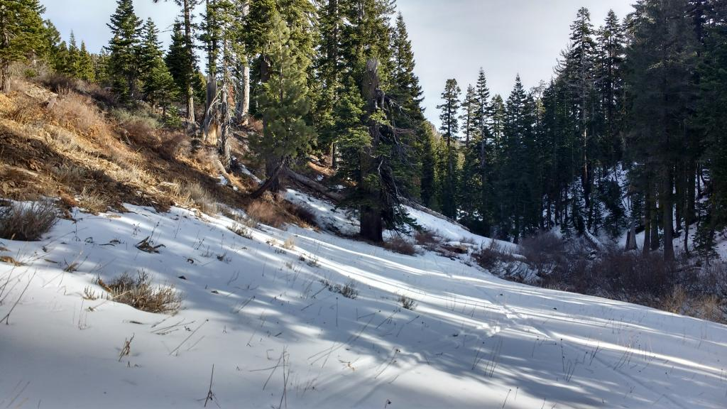 """Rare location of <a href=""""https://www.sierraavalanchecenter.org/avalanche-terms/faceted-snow"""" title=""""Angular snow with poor bonding created from large temperature gradients within the snowpack."""" class=""""lexicon-term"""">faceted snow</a> on S <a href=""""https://www.sierraavalanchecenter.org/avalanche-terms/aspect"""" title=""""The compass direction a slope faces (i.e. North, South, East, or West.)"""" class=""""lexicon-term"""">aspect</a> along shaded creekbed at approximately 7200'."""