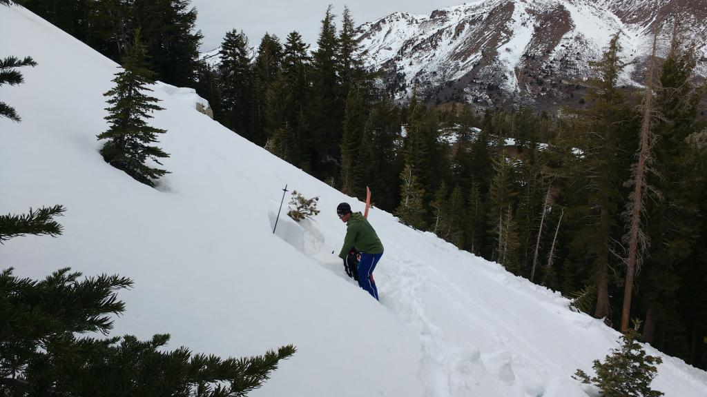 """Snowpack tests on <a href=""""https://www.sierraavalanchecenter.org/avalanche-terms/crown-face"""" title=""""The top fracture surface of a slab avalanche. Usually smooth, clean cut, and angled 90 degrees to the bed surface."""" class=""""lexicon-term"""">crown</a> flank."""