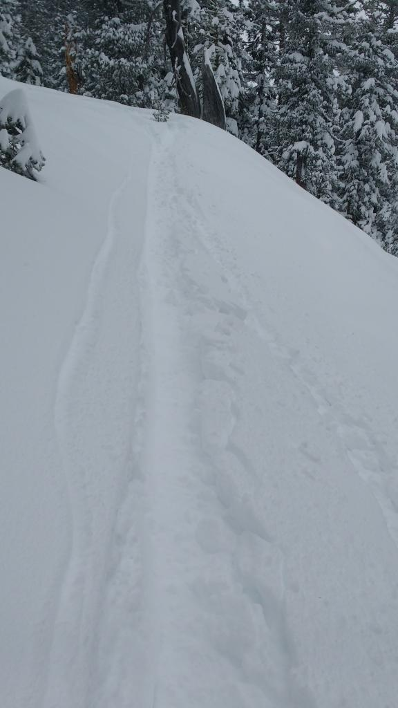 "Minor storm <a href=""https://www.sierraavalanchecenter.org/avalanche-terms/slab"" title=""A relatively cohesive snowpack layer."" class=""lexicon-term"">slab</a> cracking on slightly <a href=""https://www.sierraavalanchecenter.org/avalanche-terms/upside-down-storm"" title=""When a snowstorm deposits denser snow over less dense snow, creating a slab/weak layer combination."" class=""lexicon-term"">upside down storm</a> snow 6 in below surface."