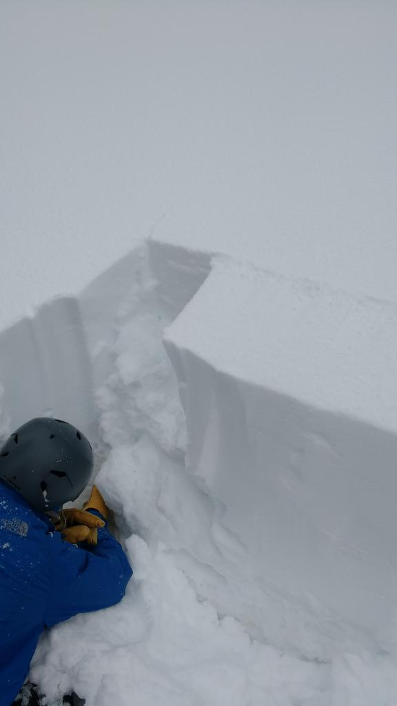 "<a href=""https://www.sierraavalanchecenter.org/avalanche-terms/snowpit"" title=""A pit dug vertically into the snowpack where snow layering is observed and stability tests may be performed. Also called a snow profile."" class=""lexicon-term"">Pit</a> dug at top of below treeline <a href=""https://www.sierraavalanchecenter.org/avalanche-terms/avalanche-path"" title=""A terrain feature where an avalanche occurs. Composed of a Starting Zone, Track, and Runout Zone."" class=""lexicon-term"">avalanche path</a> producing all ECTN results."