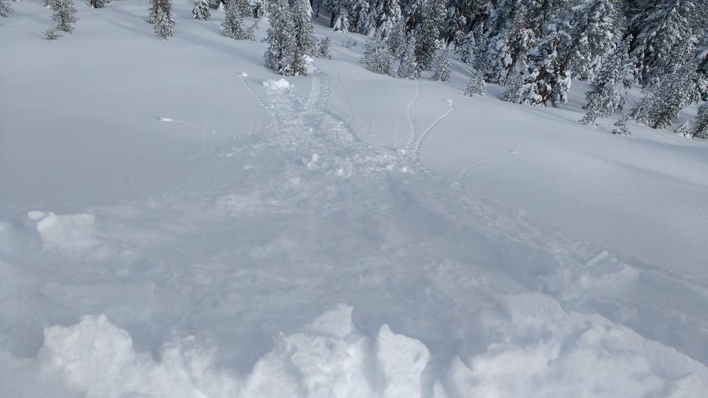 "Intentionally <a href=""https://www.sierraavalanchecenter.org/avalanche-terms/collapse"" title=""When the fracture of a lower snow layer causes an upper layer to fall. Also called a whumpf, this is an obvious sign of instability."" class=""lexicon-term"">collapsing</a> <a href=""https://www.sierraavalanchecenter.org/avalanche-terms/cornice"" title=""A mass of snow deposited by the wind, often overhanging, and usually near a sharp terrain break such as a ridge. Cornices can break off unexpectedly and should be approached with caution."" class=""lexicon-term"">cornice</a> pieces onto <a href=""https://www.sierraavalanchecenter.org/avalanche-terms/wind-loading"" title=""The added weight of wind drifted snow."" class=""lexicon-term"">wind loaded</a> slopes near the summit of Andesite Pk produced no <a href=""https://www.sierraavalanchecenter.org/avalanche-terms/slab"" title=""A relatively cohesive snowpack layer."" class=""lexicon-term"">slab</a> failure, just entraining of loose dry snow."