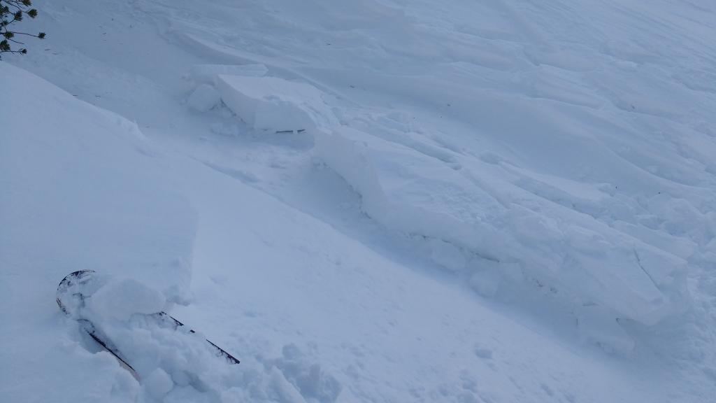 "Test slope <a href=""https://www.sierraavalanchecenter.org/avalanche-terms/wind-slab"" title=""A cohesive layer of snow formed when wind deposits snow onto leeward terrain. Wind slabs are often smooth and rounded and sometimes sound hollow."" class=""lexicon-term"">wind slab</a> failure 10' wide near noted lat/long."