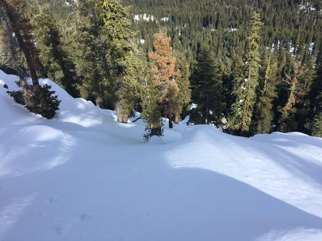 "Looking down the <a href=""https://www.sierraavalanchecenter.org/avalanche-terms/avalanche-path"" title=""A terrain feature where an avalanche occurs. Composed of a Starting Zone, Track, and Runout Zone."" class=""lexicon-term"">avalanche path</a>."