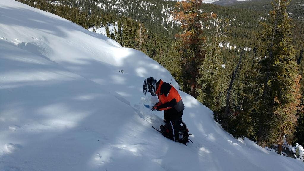 "Digging into the <a href=""https://www.sierraavalanchecenter.org/avalanche-terms/crown-face"" title=""The top fracture surface of a slab avalanche. Usually smooth, clean cut, and angled 90 degrees to the bed surface."" class=""lexicon-term"">crown</a> to look at the <a href=""https://www.sierraavalanchecenter.org/avalanche-terms/faceted-snow"" title=""Angular snow with poor bonding created from large temperature gradients within the snowpack."" class=""lexicon-term"">faceted</a> failure <a href=""https://www.sierraavalanchecenter.org/avalanche-terms/snow-layer"" title=""A snowpack stratum differentiated from others by weather, metamorphism, or other processes."" class=""lexicon-term"">layer</a>."