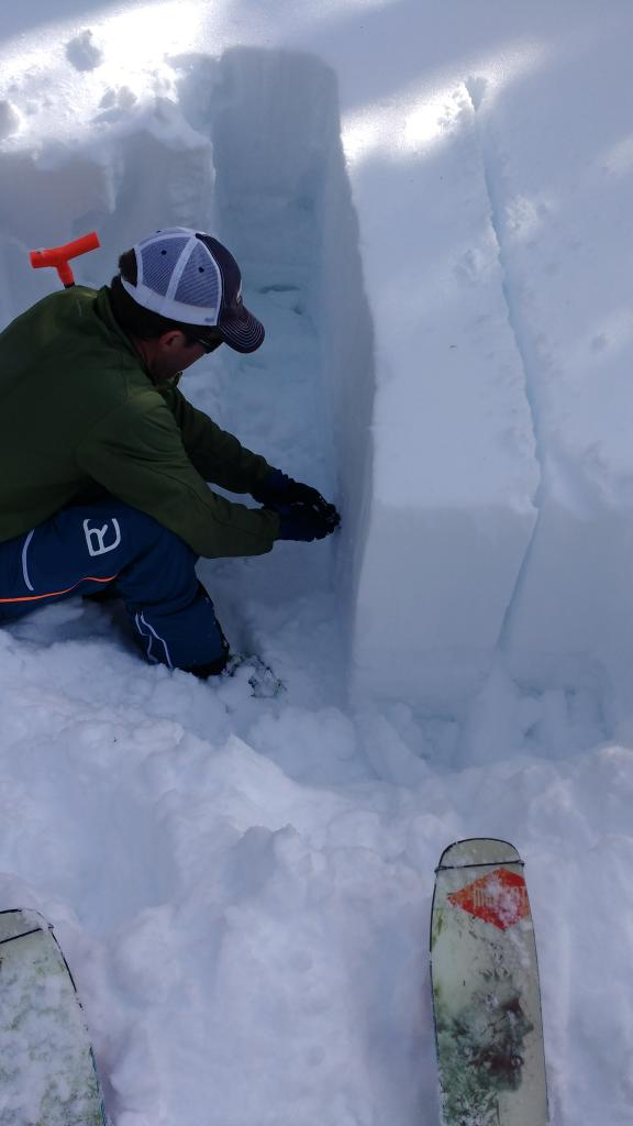 "No signs of problematic <a href=""https://www.sierraavalanchecenter.org/avalanche-terms/stability"" title=""The chance that an avalanche will not occur, relative to a given trigger (usually the weight of a human)."" class=""lexicon-term"">stability</a> in testpit."