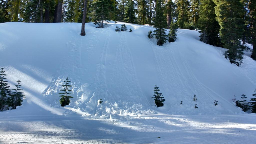 "Recent roller balls created by snow falling from sun exposed trees onto colder shaded N <a href=""https://www.sierraavalanchecenter.org/avalanche-terms/aspect"" title=""The compass direction a slope faces (i.e. North, South, East, or West.)"" class=""lexicon-term"">aspect</a> terrain did not produce any degree of loose wet <a href=""https://www.sierraavalanchecenter.org/avalanche-terms/avalanche"" title=""A mass of snow sliding, tumbling, or flowing down an inclined surface."" class=""lexicon-term"">avalanche</a> activity."