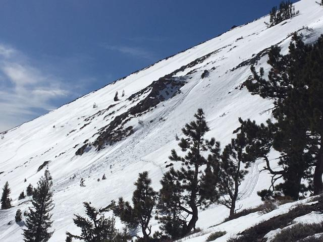 """Previous <a href=""""https://www.sierraavalanchecenter.org/avalanche-terms/loose-snow-avalanche"""" title=""""An avalanche that releases from a point and spreads downhill collecting more snow - different from a slab avalanche. Also called a point-release or sluff."""" class=""""lexicon-term"""">point release</a> loose wet <a href=""""https://www.sierraavalanchecenter.org/avalanche-terms/avalanche"""" title=""""A mass of snow sliding, tumbling, or flowing down an inclined surface."""" class=""""lexicon-term"""">avalanche</a> activity at 9000' on E <a href=""""https://www.sierraavalanchecenter.org/avalanche-terms/aspect"""" title=""""The compass direction a slope faces (i.e. North, South, East, or West.)"""" class=""""lexicon-term"""">aspect</a>."""