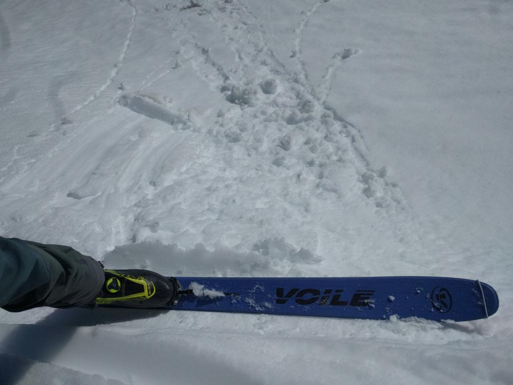 "Small roller balls on test slope.  E <a href=""https://www.sierraavalanchecenter.org/avalanche-terms/aspect"" title=""The compass direction a slope faces (i.e. North, South, East, or West.)"" class=""lexicon-term"">aspect</a> at 11:45am."