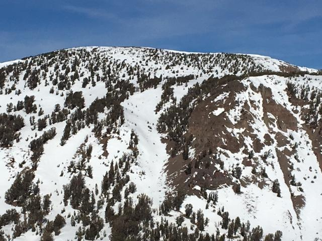 S/SE face of Mt. Houghton