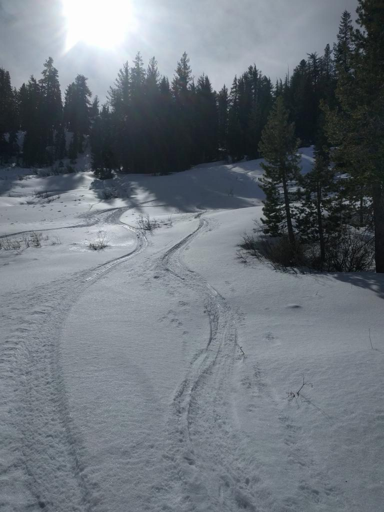 Ski tracks showing soft snow in the shade and icy crusts in the sun.