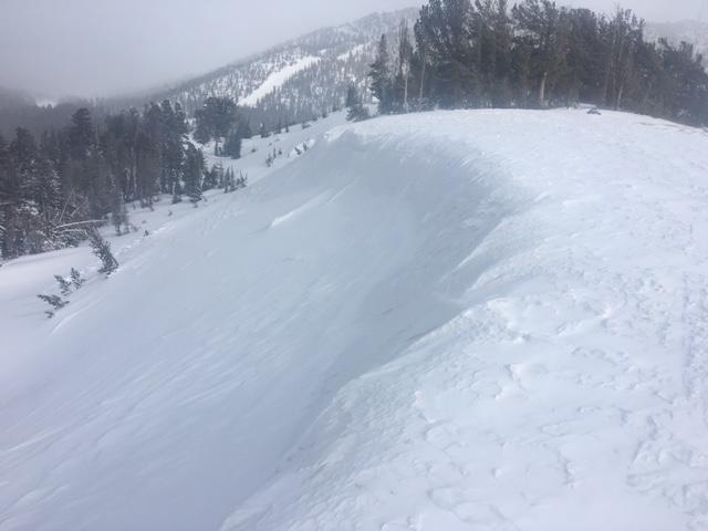 "NW/N <a href=""/avalanche-terms/aspect"" title=""The compass direction a slope faces (i.e. North, South, East, or West.)"" class=""lexicon-term"">aspect</a> on Far East Ridge of Tamarack was scoured back to firm crusts with <a href=""/avalanche-terms/cornice"" title=""A mass of snow deposited by the wind, often overhanging, and usually near a sharp terrain break such as a ridge. Cornices can break off unexpectedly and should be approached with caution."" class=""lexicon-term"">cornice</a> removed by NW winds."