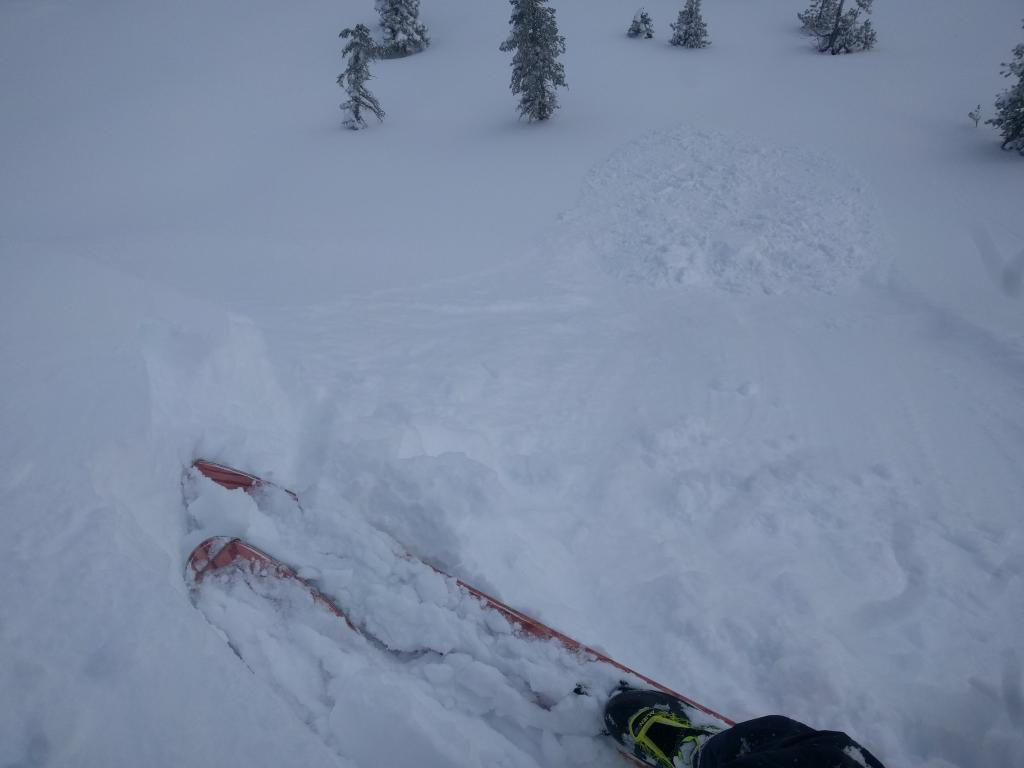 "Small <a href=""https://www.sierraavalanchecenter.org/avalanche-terms/wind-slab"" title=""A cohesive layer of snow formed when wind deposits snow onto leeward terrain. Wind slabs are often smooth and rounded and sometimes sound hollow."" class=""lexicon-term"">wind slab</a> failure."