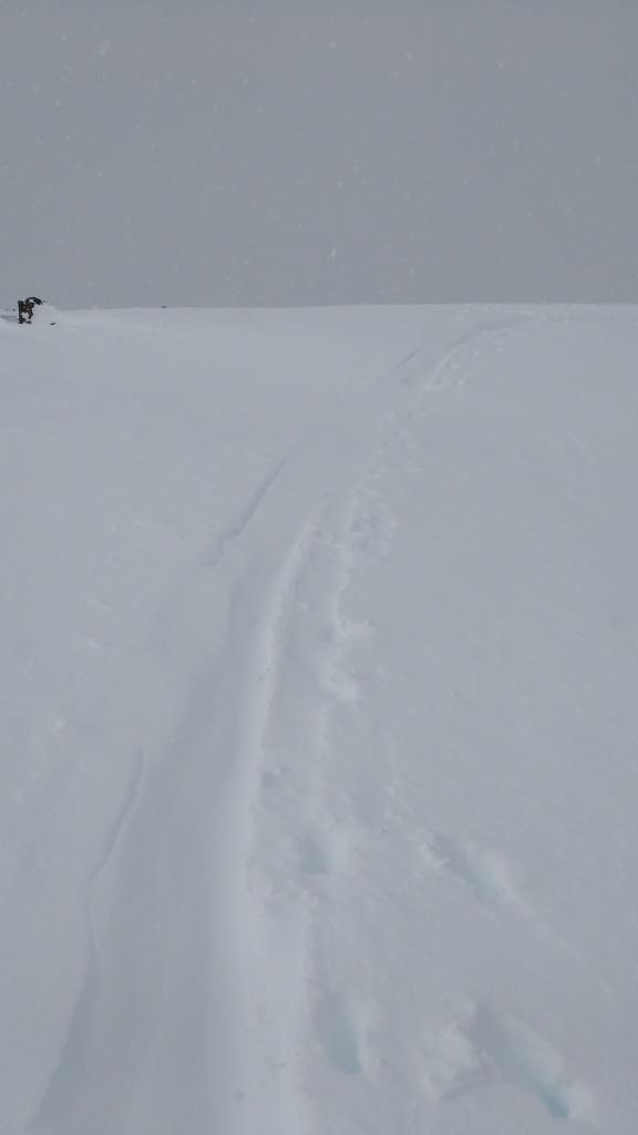 "<a href=""https://www.sierraavalanchecenter.org/avalanche-terms/skin-track"" title=""Backcountry skiers and some snowboarders ascend slopes using climbing skins attached to the bottom of their skis."" class=""lexicon-term"">Skin track</a> refillafter 45 min by wind drifted snow on the summit of Andesite Pk."