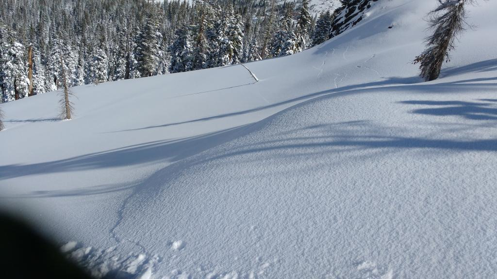 "Photo taken from triggering <a href=""https://www.sierraavalanchecenter.org/avalanche-terms/snowpit"" title=""A pit dug vertically into the snowpack where snow layering is observed and stability tests may be performed. Also called a snow profile."" class=""lexicon-term"">snowpit</a> location. These cracks ran 500&#039; over to steeper terrain where it remotely <a href=""https://www.sierraavalanchecenter.org/avalanche-terms/trigger"" title=""A disturbance that initiates fracture within the weak layer causing an avalanche. In 90 percent of avalanche accidents, the victim or someone in the victims party triggers the avalanche."" class=""lexicon-term"">triggered</a> this <a href=""https://www.sierraavalanchecenter.org/avalanche-terms/avalanche"" title=""A mass of snow sliding, tumbling, or flowing down an inclined surface."" class=""lexicon-term"">avalanche</a> beyond the view of this photo.  Shooting cracks continued and went a total of 1000&#039; away from this spot into lower angle terrain on the other side of the <a href=""https://www.sierraavalanchecenter.org/avalanche-terms/avalanche"" title=""A mass of snow sliding, tumbling, or flowing down an inclined surface."" class=""lexicon-term"">avalanche</a>."