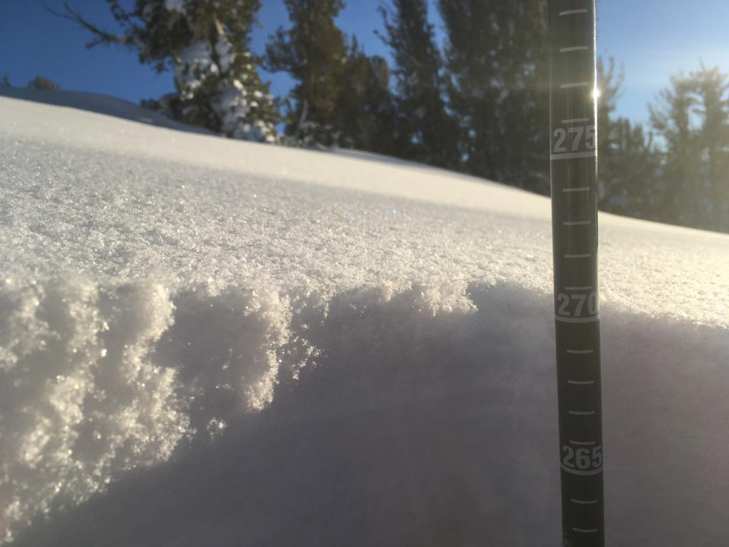 "270 cm total snow height at this location. Buried near surface <a href=""https://www.sierraavalanchecenter.org/avalanche-terms/faceted-snow"" title=""Angular snow with poor bonding created from large temperature gradients within the snowpack."" class=""lexicon-term"">facets</a> down 125 cms."