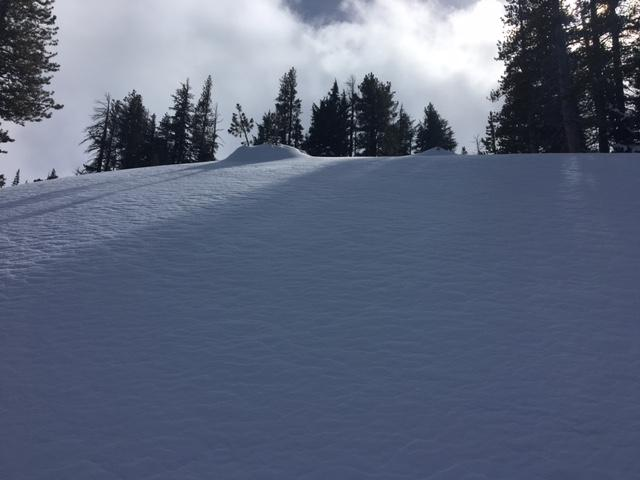 "Cold unconsolidated snow existed at 8400' on N <a href=""https://www.sierraavalanchecenter.org/avalanche-terms/aspect"" title=""The compass direction a slope faces (i.e. North, South, East, or West.)"" class=""lexicon-term"">aspects</a>."