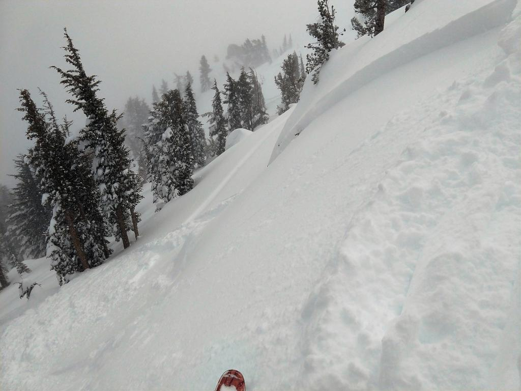 "Skier <a href=""https://www.sierraavalanchecenter.org/avalanche-terms/trigger"" title=""A disturbance that initiates fracture within the weak layer causing an avalanche. In 90 percent of avalanche accidents, the victim or someone in the victims party triggers the avalanche."" class=""lexicon-term"">triggered</a> <a href=""https://www.sierraavalanchecenter.org/avalanche-terms/wind-slab"" title=""A cohesive layer of snow formed when wind deposits snow onto leeward terrain. Wind slabs are often smooth and rounded and sometimes sound hollow."" class=""lexicon-term"">wind slab</a> near top of Peak.  E <a href=""https://www.sierraavalanchecenter.org/avalanche-terms/aspect"" title=""The compass direction a slope faces (i.e. North, South, East, or West.)"" class=""lexicon-term"">aspect</a>, 38 degree, 8900'."