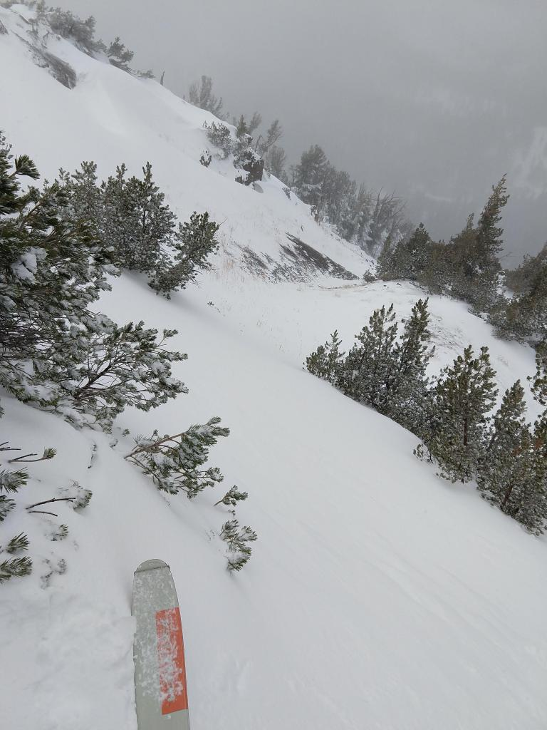 """Wind-<a href=""""/avalanche-terms/loading"""" title=""""The addition of weight on top of a snowpack, usually from precipitation, wind drifting, or a person."""" class=""""lexicon-term"""">loaded</a> areas held more snow coverage, but the coverage decreased quickly below the ridges with many areas of bare ground still present."""