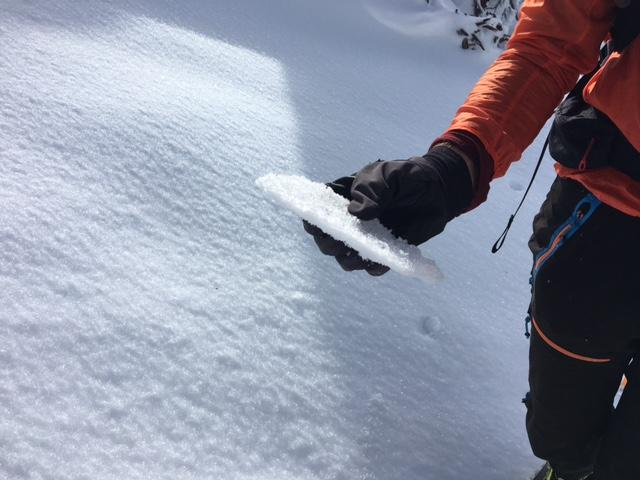 """<a href=""""/avalanche-terms/rain-crust"""" title=""""A clear layer of ice formed when rain falls on the snow surface then freezes."""" class=""""lexicon-term"""">Rain crust</a> up to peak at 9100&#039;."""