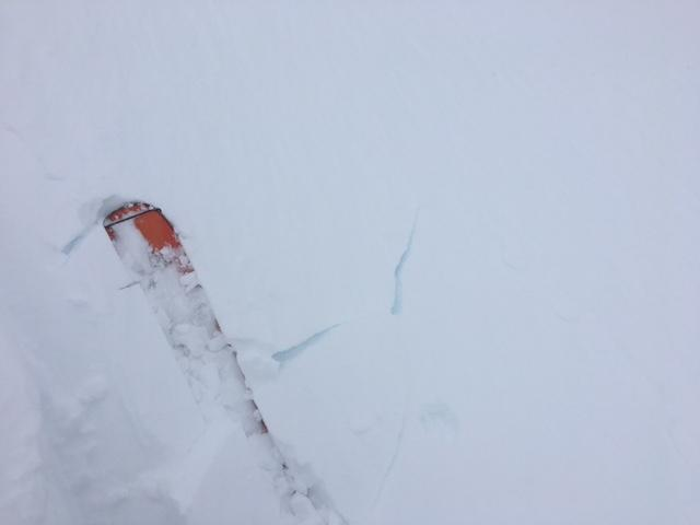 """Minor skier <a href=""""/avalanche-terms/trigger"""" title=""""A disturbance that initiates fracture within the weak layer causing an avalanche. In 90 percent of avalanche accidents, the victim or someone in the victims party triggers the avalanche."""" class=""""lexicon-term"""">triggered</a> cracking of newly formed <a href=""""/avalanche-terms/wind-slab"""" title=""""A cohesive layer of snow formed when wind deposits snow onto leeward terrain. Wind slabs are often smooth and rounded and sometimes sound hollow."""" class=""""lexicon-term"""">wind slabs</a>."""