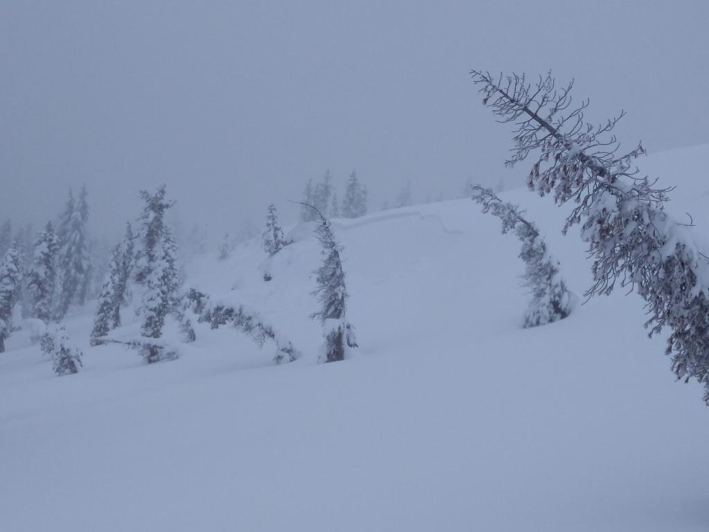 """One of several natural <a href=""""https://www.sierraavalanchecenter.org/avalanche-terms/wind-slab"""" title=""""A cohesive layer of snow formed when wind deposits snow onto leeward terrain. Wind slabs are often smooth and rounded and sometimes sound hollow."""" class=""""lexicon-term"""">wind slab</a> <a href=""""https://www.sierraavalanchecenter.org/avalanche-terms/avalanche"""" title=""""A mass of snow sliding, tumbling, or flowing down an inclined surface."""" class=""""lexicon-term"""">avalanches</a> on Andesite Peak, E <a href=""""https://www.sierraavalanchecenter.org/avalanche-terms/aspect"""" title=""""The compass direction a slope faces (i.e. North, South, East, or West.)"""" class=""""lexicon-term"""">aspect</a>, ~8,100'."""