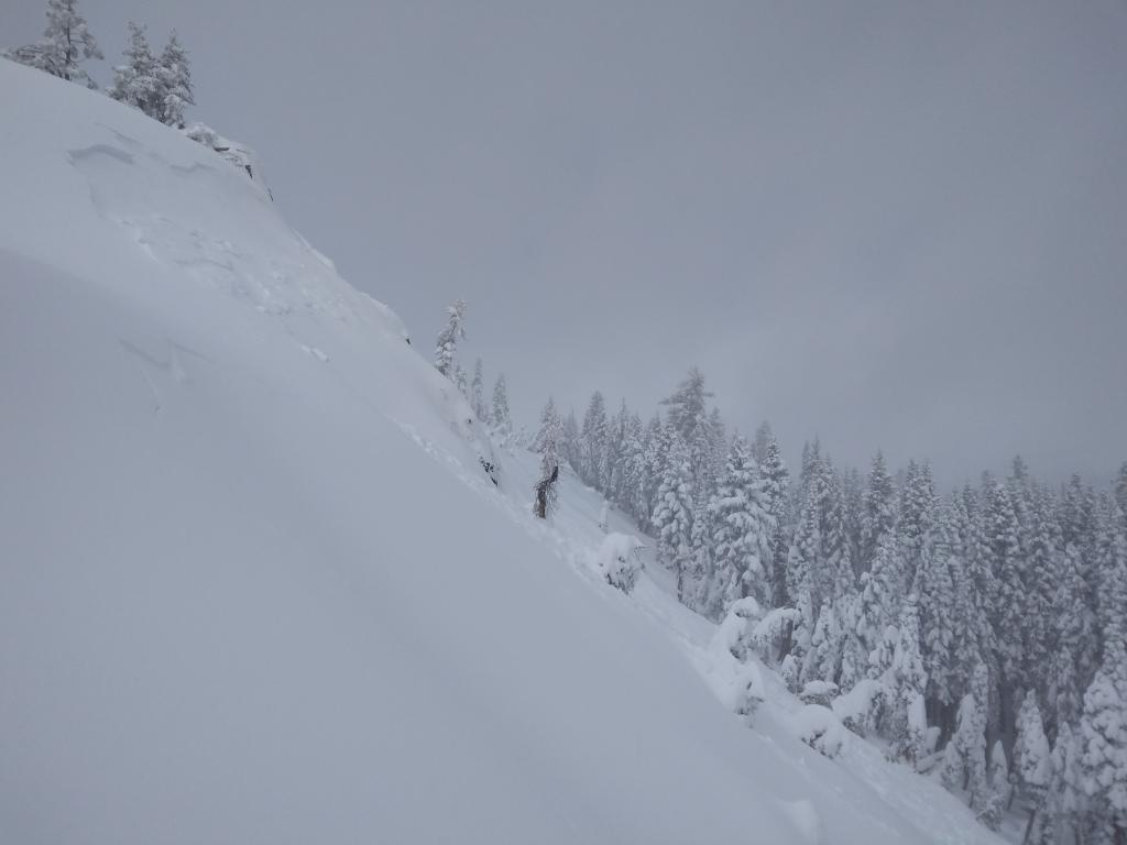 """Still another natural <a href=""""https://www.sierraavalanchecenter.org/avalanche-terms/wind-slab"""" title=""""A cohesive layer of snow formed when wind deposits snow onto leeward terrain. Wind slabs are often smooth and rounded and sometimes sound hollow."""" class=""""lexicon-term"""">wind slab</a> <a href=""""https://www.sierraavalanchecenter.org/avalanche-terms/avalanche"""" title=""""A mass of snow sliding, tumbling, or flowing down an inclined surface."""" class=""""lexicon-term"""">avalanche</a>, above treeline terrain, ENE <a href=""""https://www.sierraavalanchecenter.org/avalanche-terms/aspect"""" title=""""The compass direction a slope faces (i.e. North, South, East, or West.)"""" class=""""lexicon-term"""">aspect</a>, ~8,100'. Wide <a href=""""https://www.sierraavalanchecenter.org/avalanche-terms/propagation"""" title=""""The spreading of a fracture or crack within the snowpack."""" class=""""lexicon-term"""">propagation</a> with the far flank about 2/3rds of the way across the open slope in the background. Easily 200' wide."""